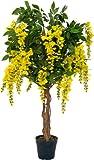Goldregen Kunstbaum