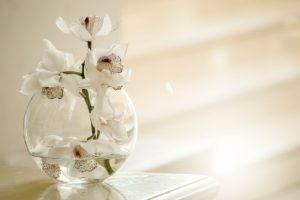 Vasen, Orchideen